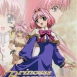 Princess Memory – Episódios